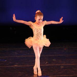 Artistry-Dance-Project-Concert-Order-Form-Packer